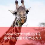 電子マネーnanaco(ナナコ)ポイントを最大6%増量で貯める方法