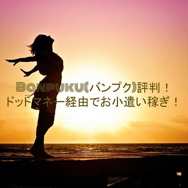 ポイントサイトBanpuku(バンプク)評判!ドットマネー経由でお小遣い稼ぎ!