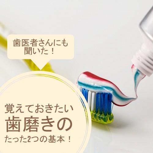 歯医者さんにも聞いた覚えておきたい歯磨きのたった2つの基本!