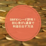 SBI FXトレード評判!初心者が1通貨で2万円以上利益を出す方法