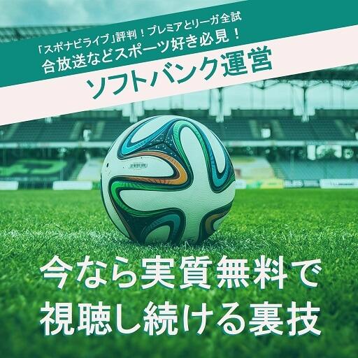スポナビまとめSPORT-navi-matome (1)