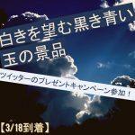 ツイッターのプレゼントキャンペーン参加!白きを望む黒き青い玉の景品【3/18到着】