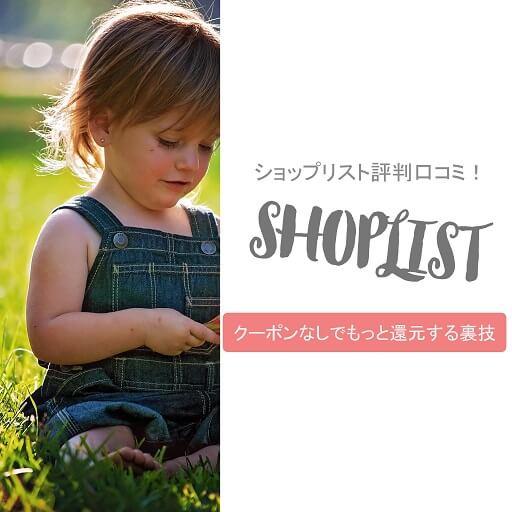 shoplist-matome (1)