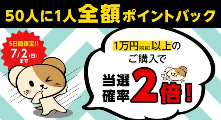 zengaku-point-back