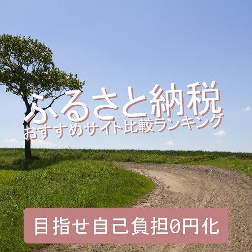 furusato-nouzei-ranking