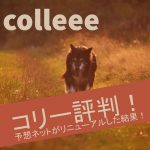 colleee(コリー)評判!予想ネットがリニューアルした結果!【11/28リリース予定】