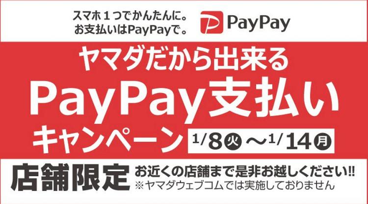 yamada-paypay0114