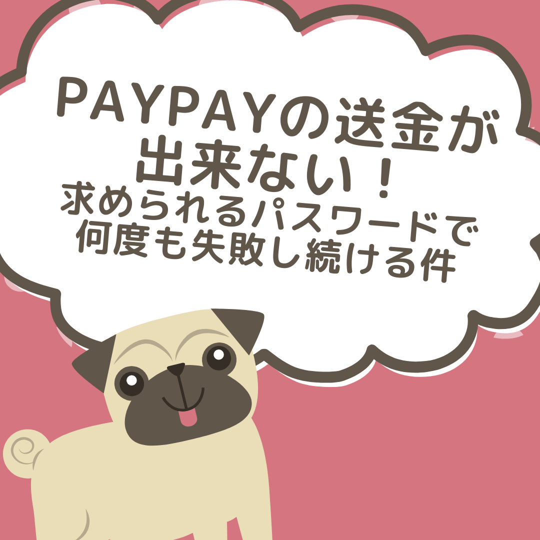 paypay-password