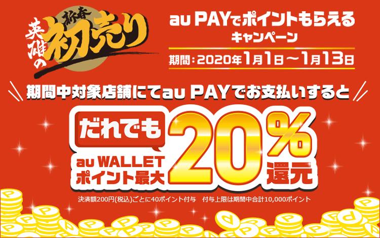 au pay-cp-0113