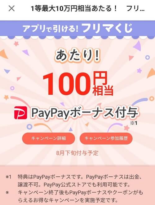 paypay-furima-100